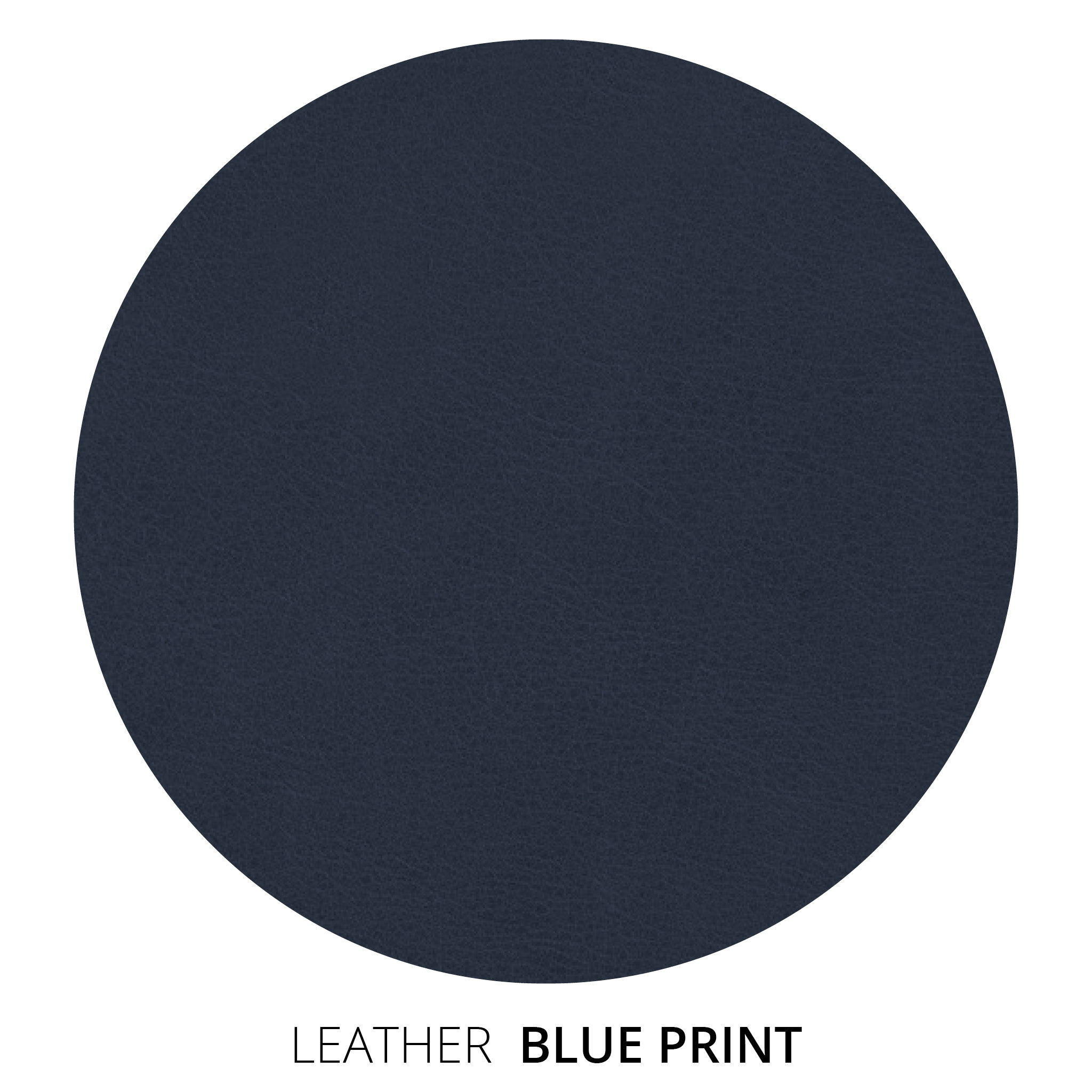 Blue Print Leather Swatch