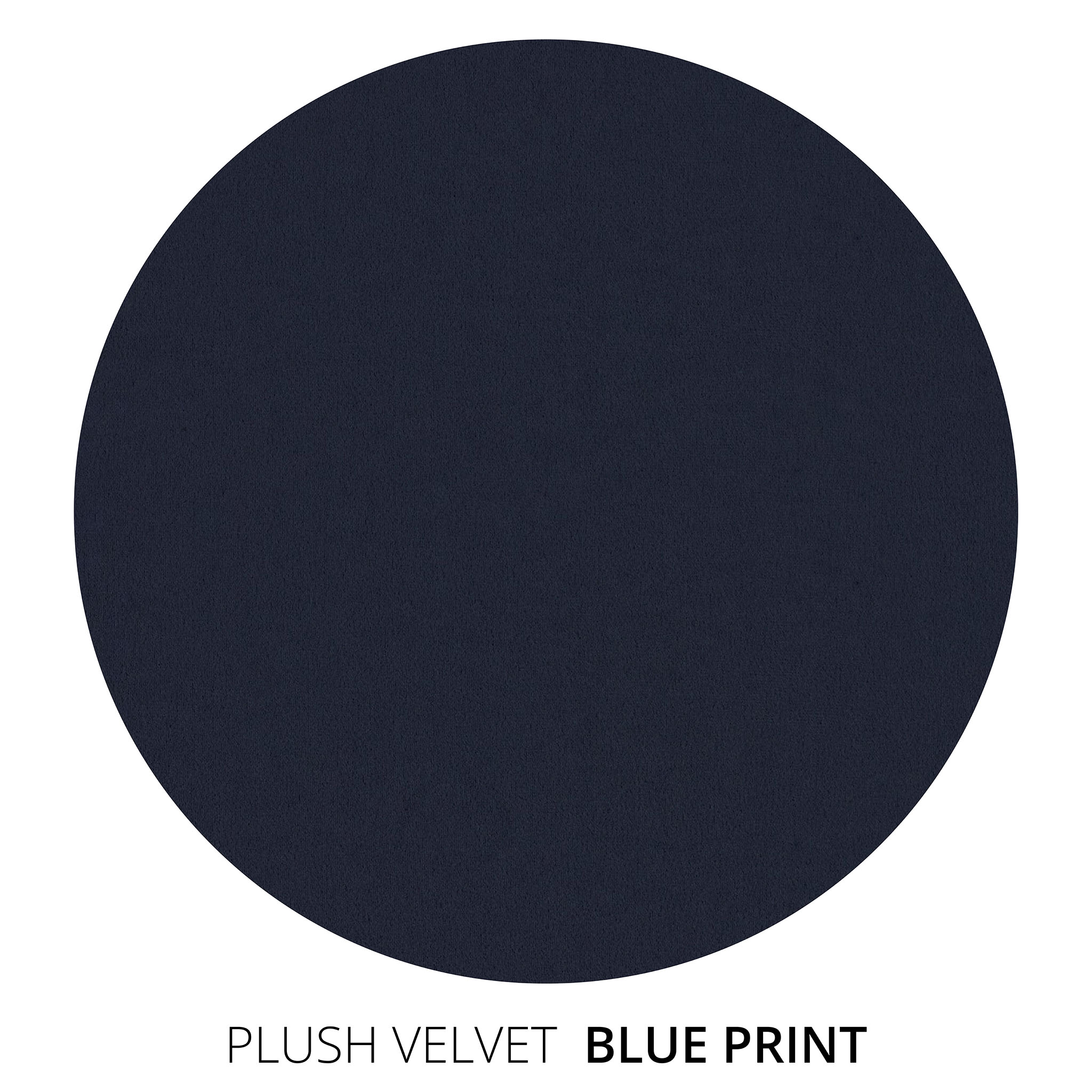 Blue Print Plush Velvet Swatch